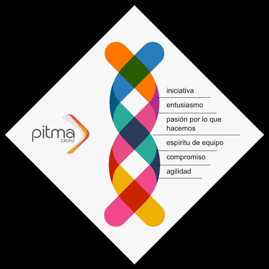 ADN grupo PITMA